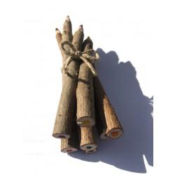 petit fagot de faux crayons de couleur en bois naturel